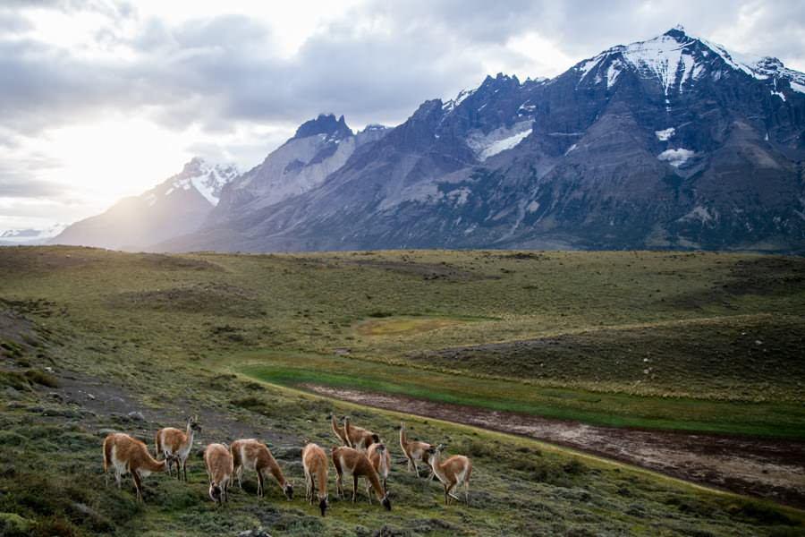 Torres del Paine National Park Wandern   Roadtrip Chile und Argentinien   Patagonien Reise   Patagonien Bilder von Rolling Adventure