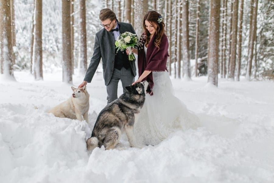 Huskies bei der Winterhochzeit - Stefanie Reindl Photography