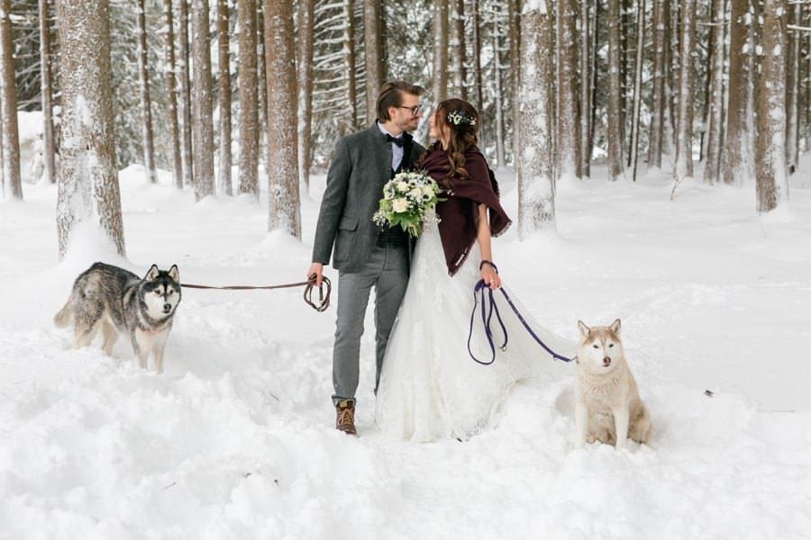 Huskies dürfen bei einer Winterhochzeit nicht fehlen   Stefanie Reindl Photography